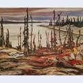 Wilderness deese bay