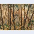 Bamboo forest i