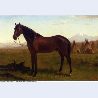 Portrait of a horse 1869