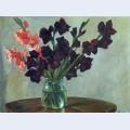 Black gladiolus