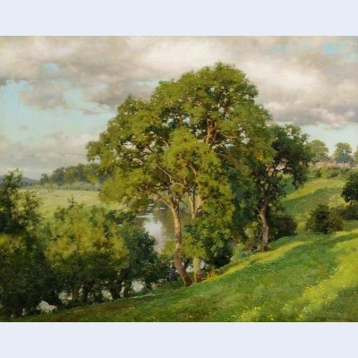 Ash trees at cropthorne worcestershire