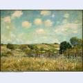 Meadow 1875