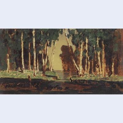 A birch grove