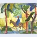 Donkey rider