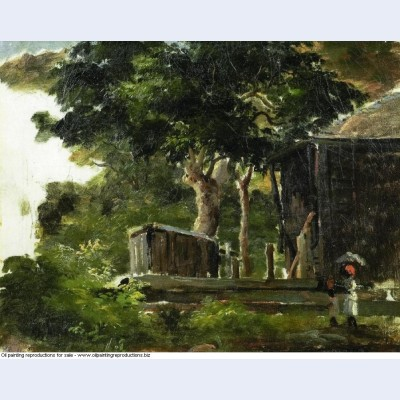 Landscape with house in the woods in saint thomas antilles