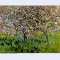 Apple trees in bloom at giverny 1901