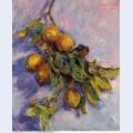 Branch of lemons 1