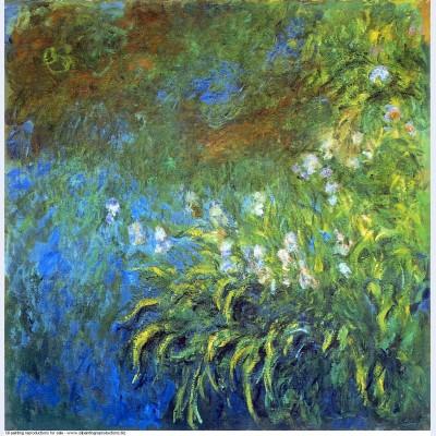 Iris at the sea rose pond 1917