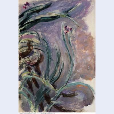 Irises 1917