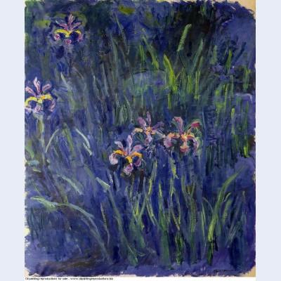 Irises 2 1917