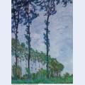 Poplars wind effect