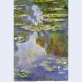 Water lilies 20