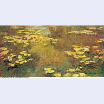 Water lilies 45