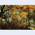 Coesweerd in laren in the autumn