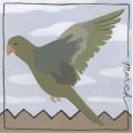 Avian march