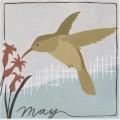 Avian may
