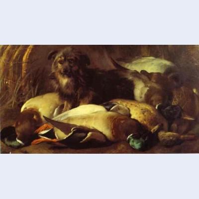 Decoyman s dog and duck