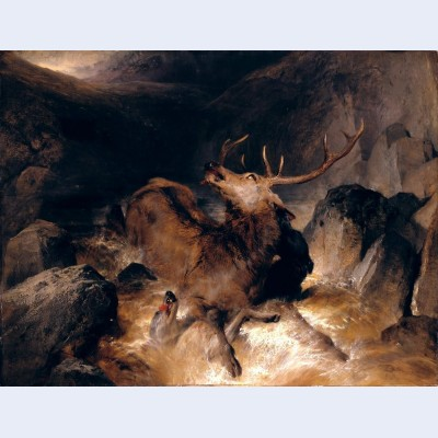 Deer and deer hounds in a mountain torrent