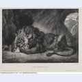 Lion of the atlas 1829 1