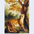 Puma 1859 2