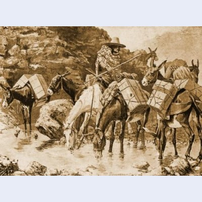 Mule train crossing the sierras