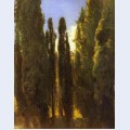 Cypresses in the crimea