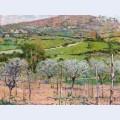 The green fields of tobbiana