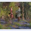 Picking bluebells