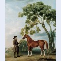 Lord grosvenor s arabian stallion with a groom