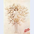 Mimicry synoptic the tree woman or woman flower