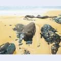 Mar e basse ii rochers