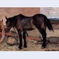 Pferd vor einem wagen