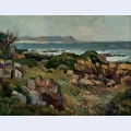 Hermanus seascape