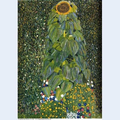 The sunflower 1907