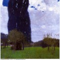 The tall poplar trees ii