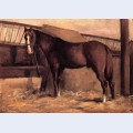 Yerres reddish bay horse in the stable
