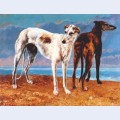 Greyhounds of comte de choiseul