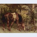 Horse in the woods