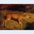 The dead doe