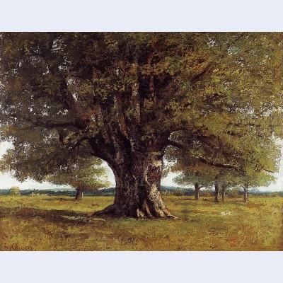 The oak of flagey the oak of vercingetorix