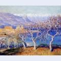 Fig trees antibes