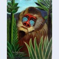 Mandrill in the jungle