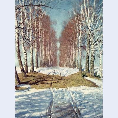Avenue of birch trees