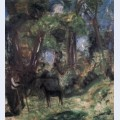 Forest scene with colt