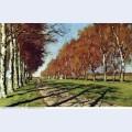 Big road sunny autumn day 1897