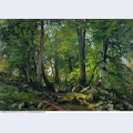 Beech forest in switzerland 1863 1