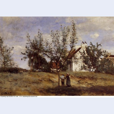 An orchard at harvest time