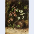 Still life of birds nest with primulas and blossom