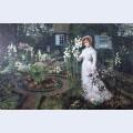 The rector s garden queen of the lilies