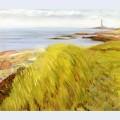 Grassy dunes gloucester